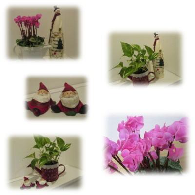 風水 玄関にお花を飾って運気アップ